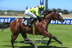 Sailor Sam by Sail from Seattle and bred by Hemel 'n Aarde Stud wins a juvenile maiden at Kenilworth in late February 2018 for Messrs Henderson and van Huysteen, trained by Greg ennion and ridden by Corne Orffer.